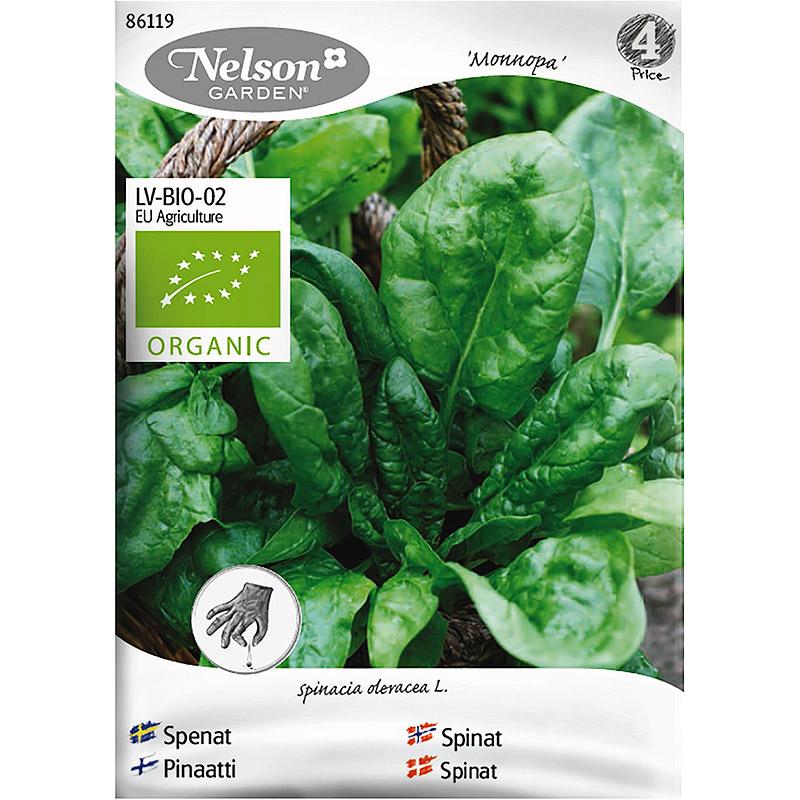 Spenat Monnopa, Organic-Ekologiskt frö till spenat, Monnopa