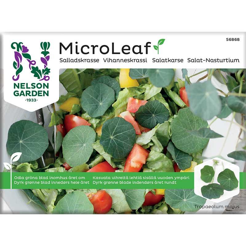 Frö till mikroblad - Micro leaf, salladskrasse