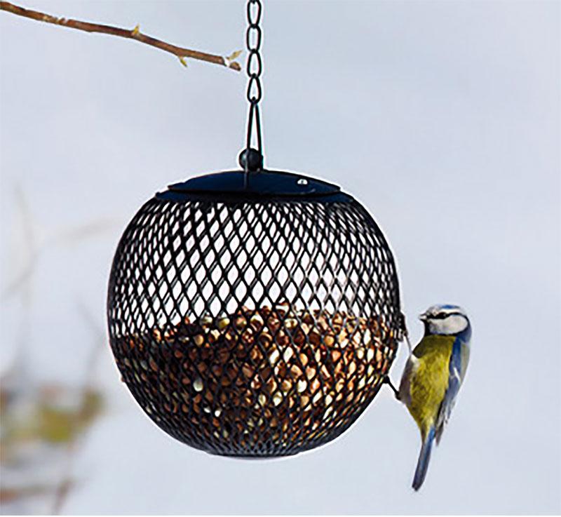 Jordnötsautomat Globe, svart-Jordnötsautomat för småfåglar