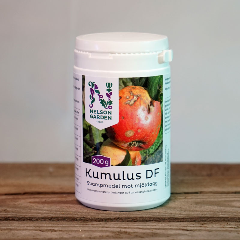 Bekämpning mot mjöldagg med Kumulus DF 200 gram