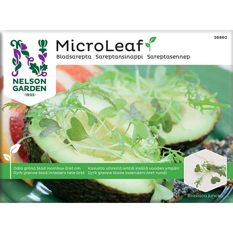 för till microleaf bladsarepta