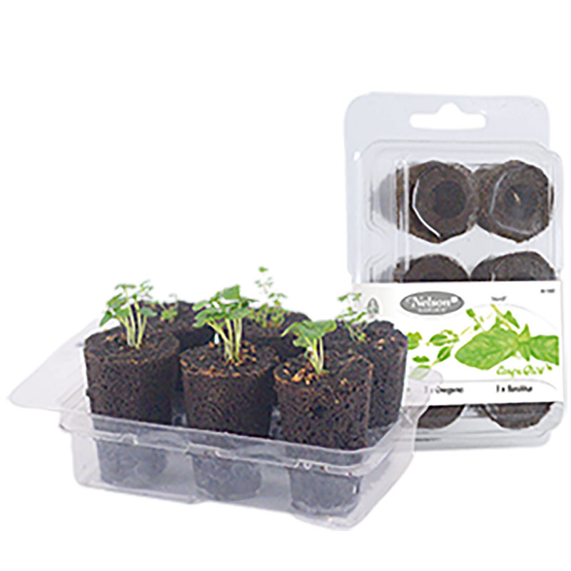 Odlingsset, Easy To Grow, Herb-Förodlingsset Easy to Grow, herb