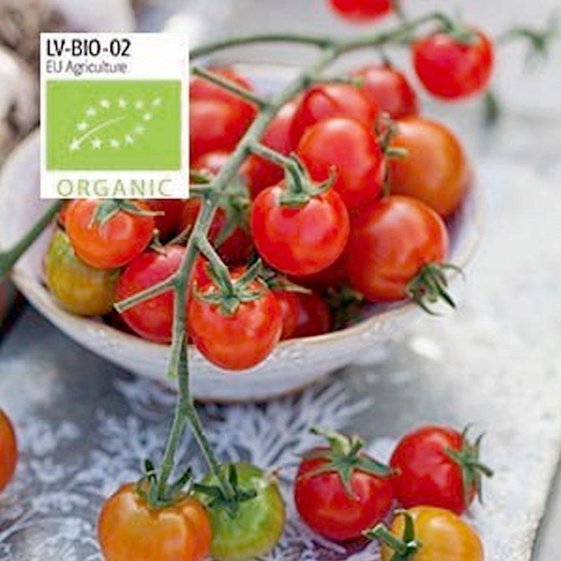 Ekologiskt frö till tomat Zuckertraube
