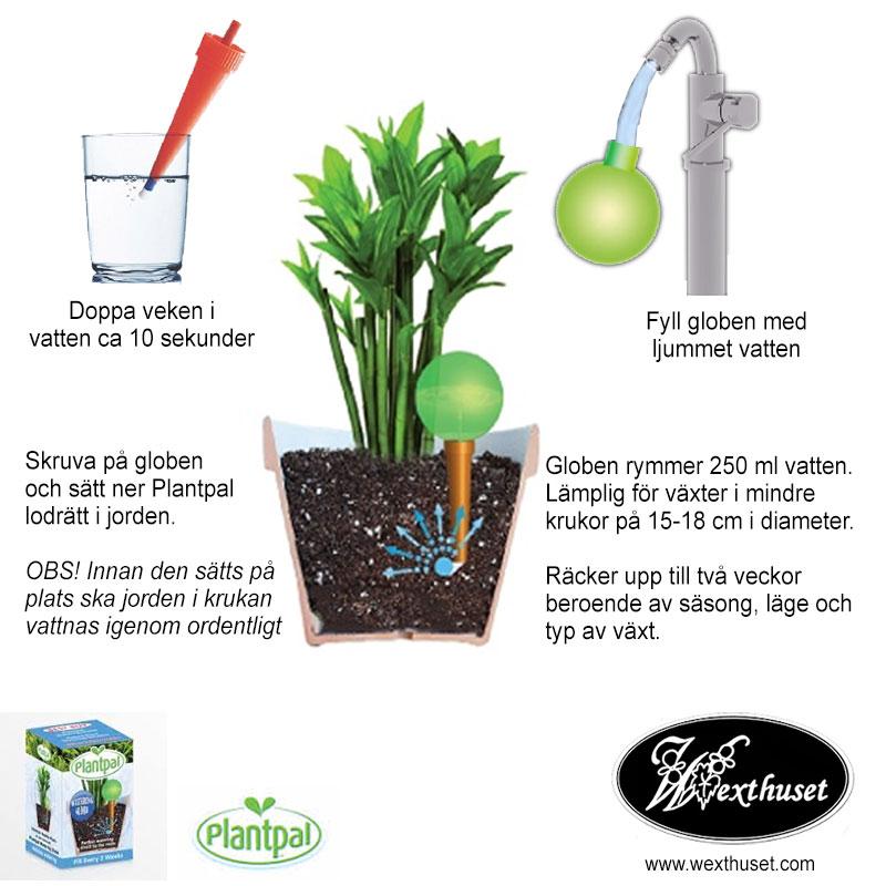 Beskrivning långtidsbevattning Plantpal