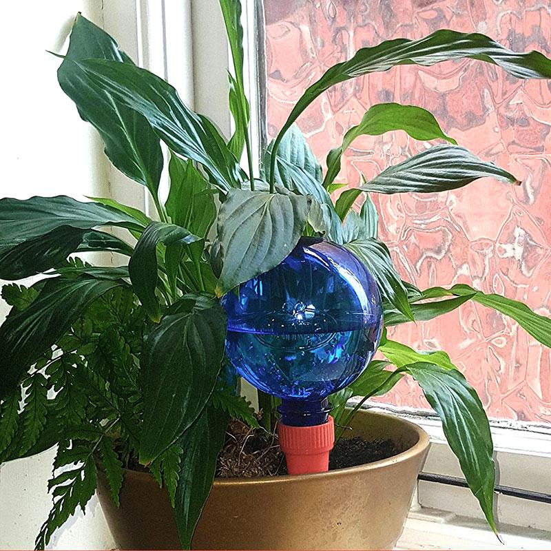 Plantpal, långtidsbevattning av krukväxter