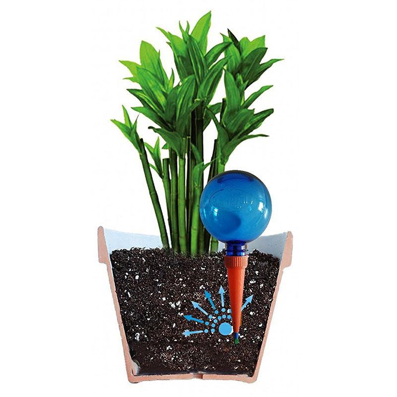 Automatbevattning för krukväxter, blå