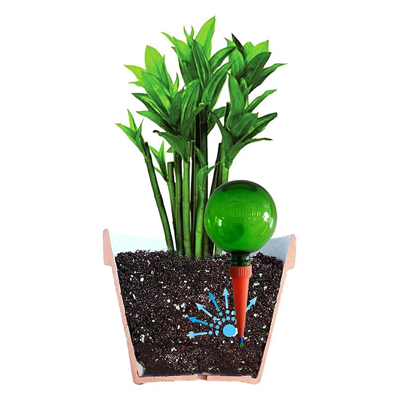 Automatbevattning för krukväxter, grön