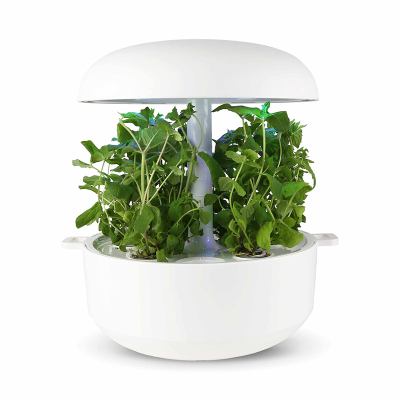 Frökapsel Plantui Smart Garden - Mynta, Frökapsel till Smart Garden inomhusodling - Mentha ssp