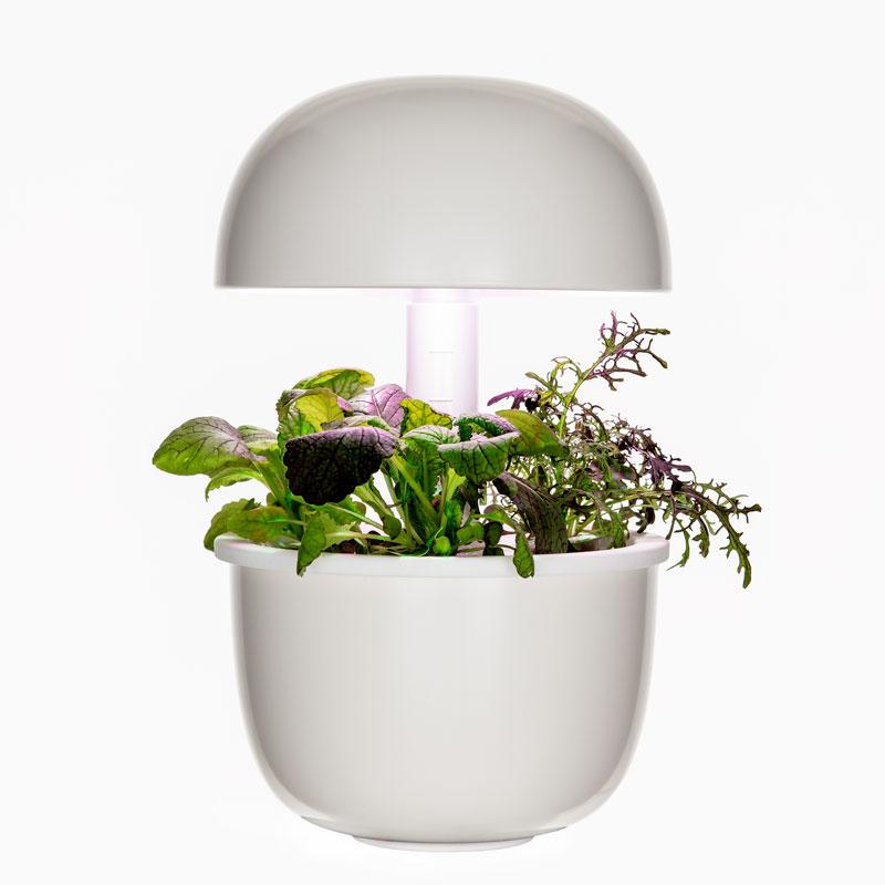 Plantui 3e, inomhusodling för tre kapslar