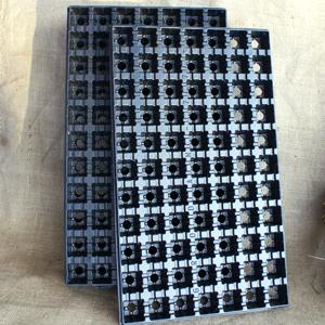 Plastbrätte med 11 x 7 pluggar-