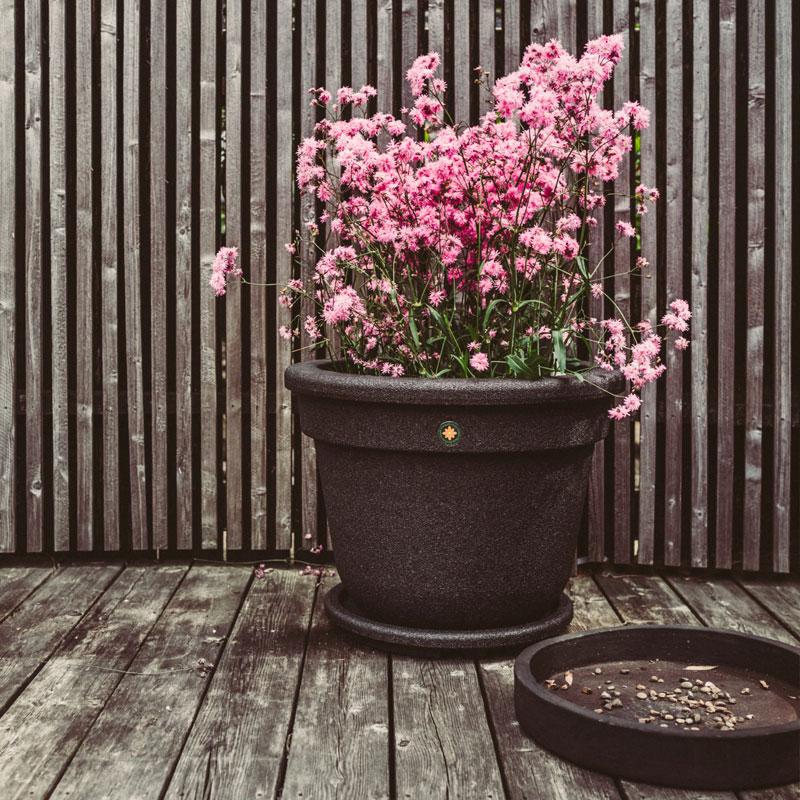 Plantering i Lindesbergskrukan Classic Medium