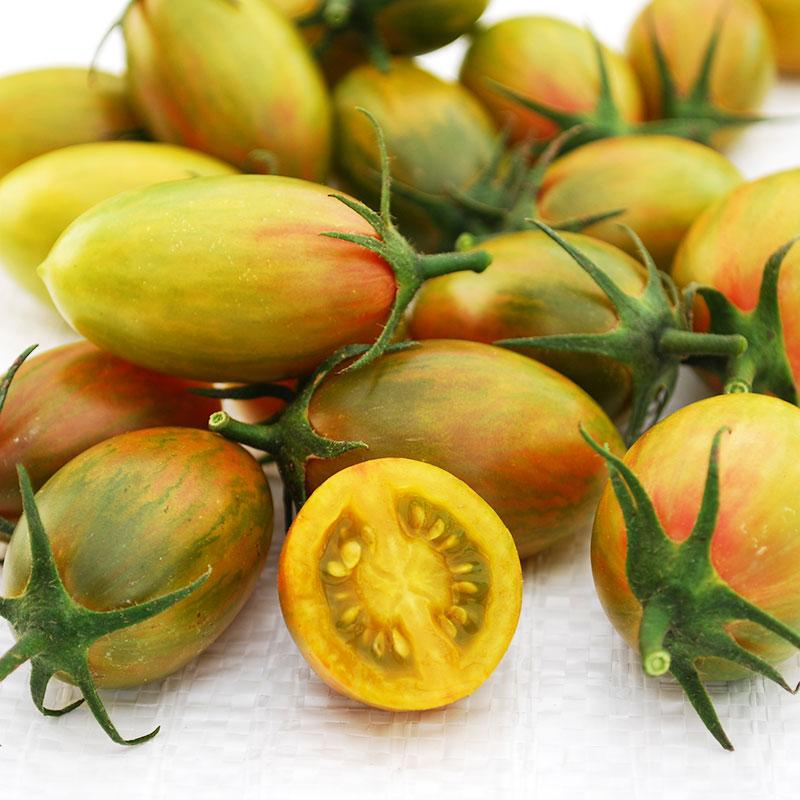 Tomat Artisan Lucky Tiger-Frö till ovanlig tomat Artisan Lucky Tiger