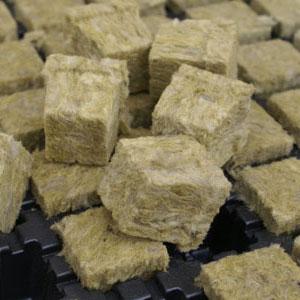 Rockwool för odling med fröer och sticklingar