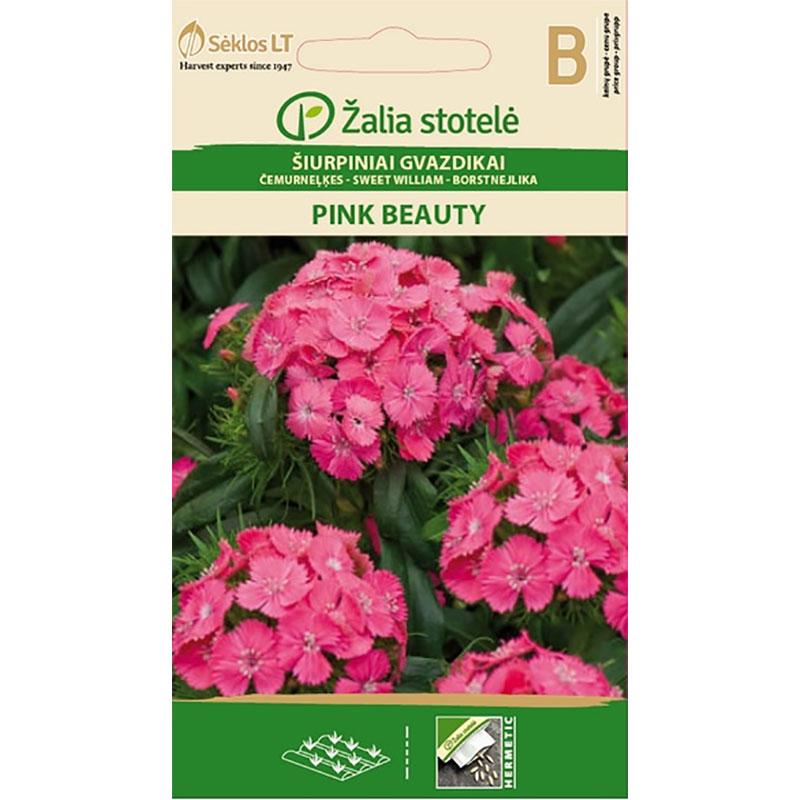 Borstnejlika Pink Beauty,