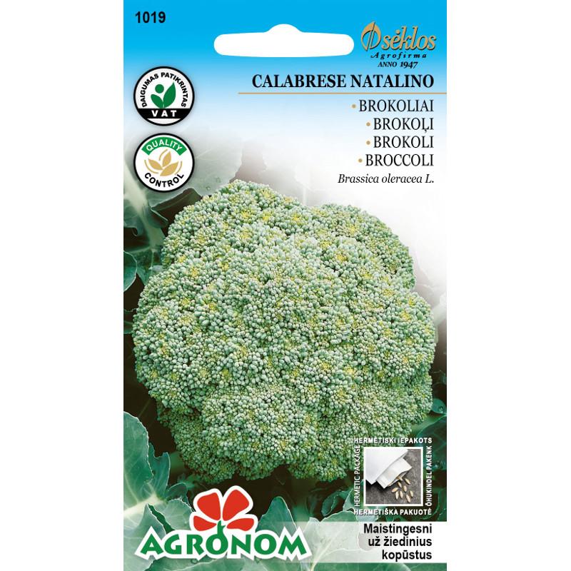 Broccoli Calabrese Natalino-Frö till Broccoli - Calabrese Natalino