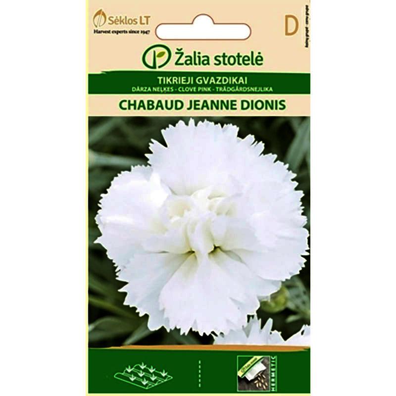 Nejlika Chabaud Jeanne Dionis, Nejlika Chaubaud Jeanne Dionis - fröer