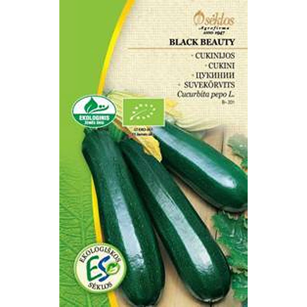 Squash Organic Black Beauty, Frö till Squash Organic - Black Beauty