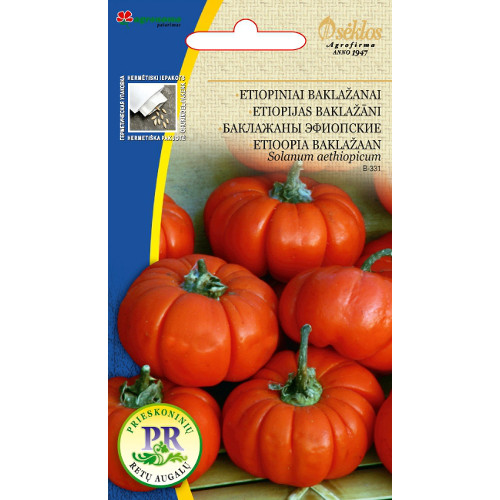 Etiopisk äggplanta Aubergine, Frö till Etiopisk äggplanta - Aubergine