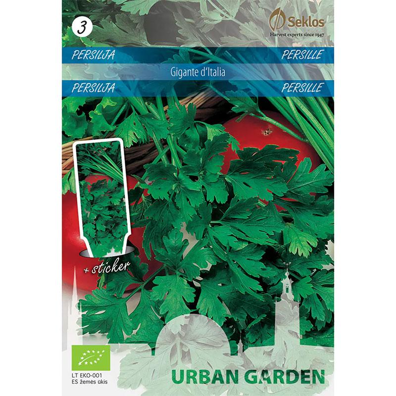 Frö till Persilja slätbladig organic - Gigante d'italia