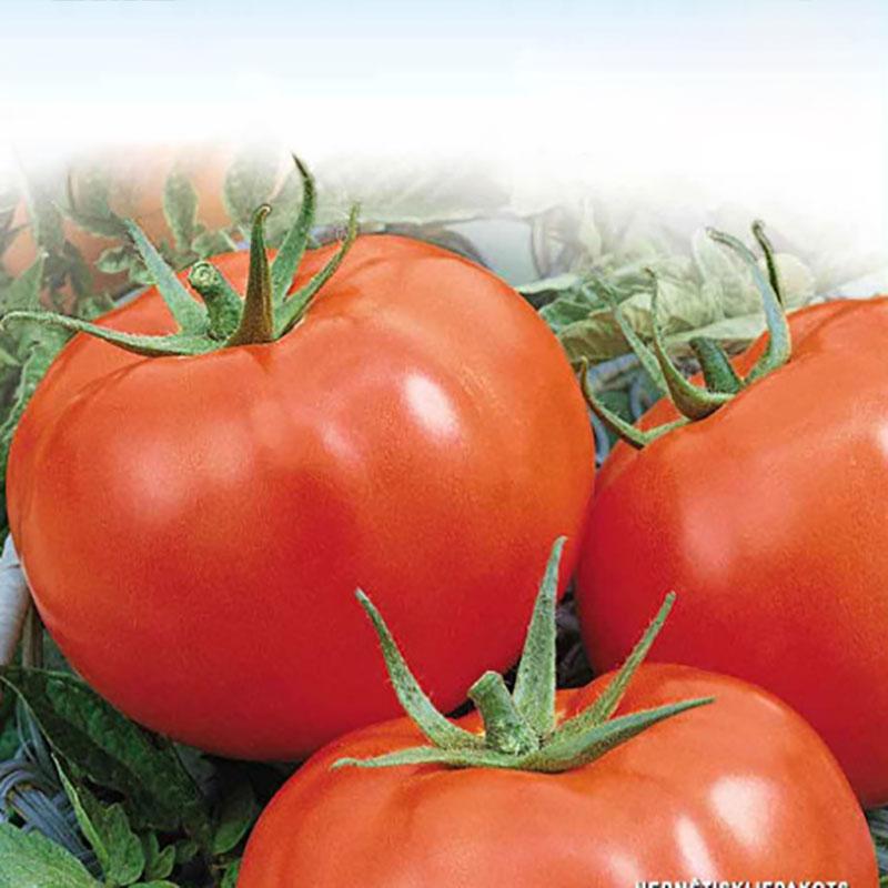 Frö till Tomat - Marglobe