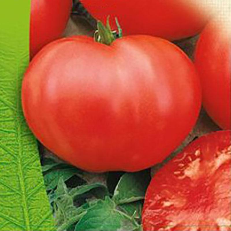 Frö till Tomat Organic - Cuor di Bue
