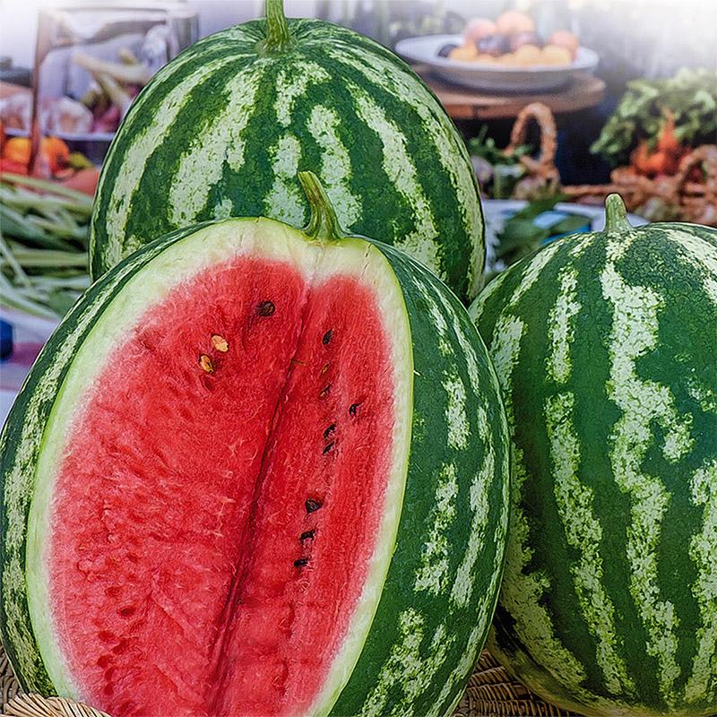 Frö till vattenmelon - Crimson Sweet