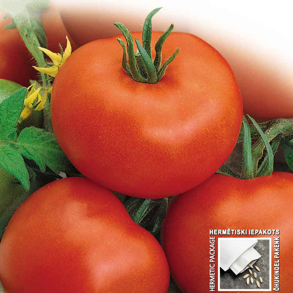 Tomat, Betalux-Fröer till tomat tomato, bettalux