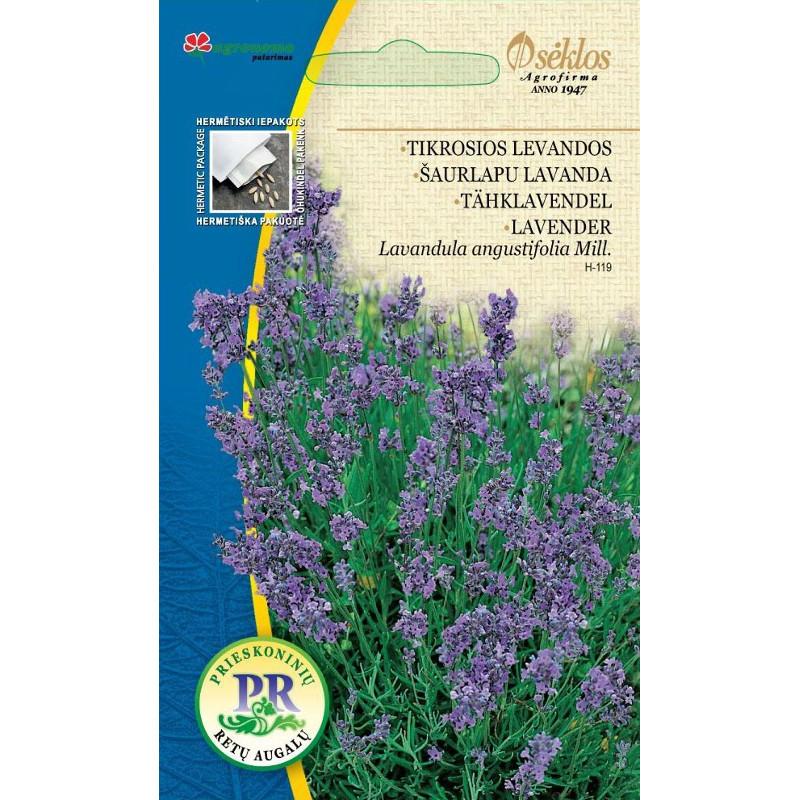 Lavendel augustifolia-Frö till Lavendel augustifolia