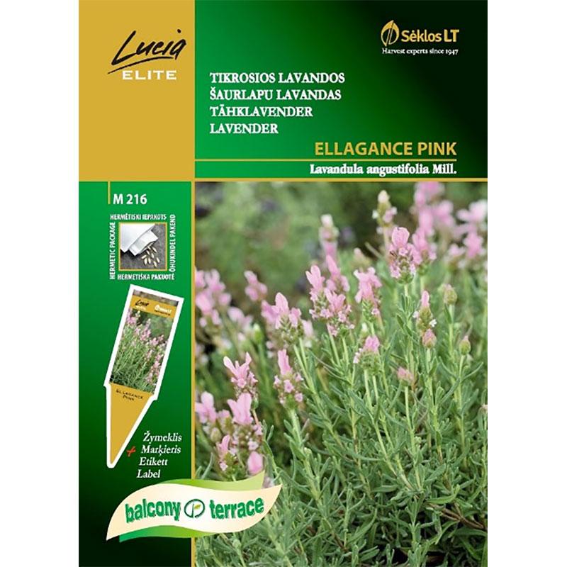 Lavendel Ellegance Pink-Frö till Lavendel Ellegance Pink