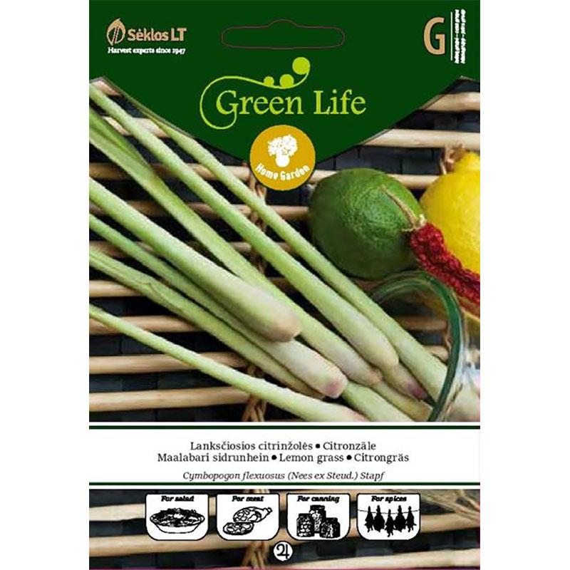 Citrongräs-Frö till Citrongräs
