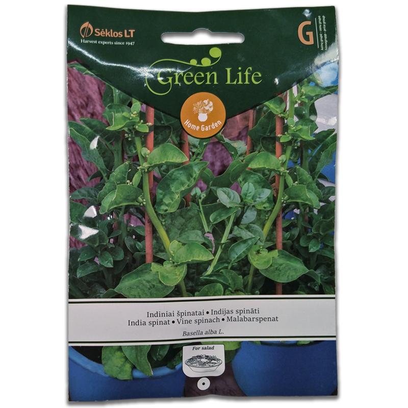 Malabarspenat Vine Spinach-Frö till Malabarspenat