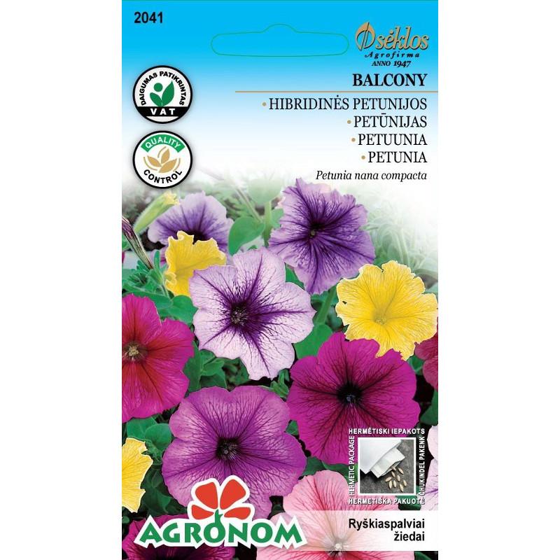 Petunia Balcony-Frö till Petunia - Balcony