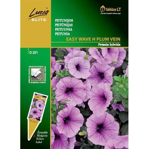 Petunia Easy Wave, Plum-Frö till Petunia - Easy Wave, Plum