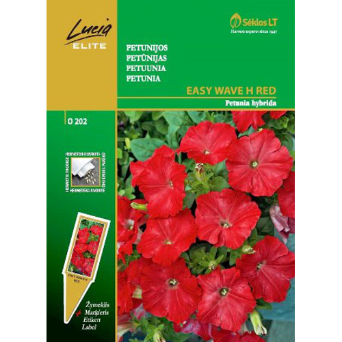 Petunia Easy Wave, red, Frö till Petunia - Easy Wave, red