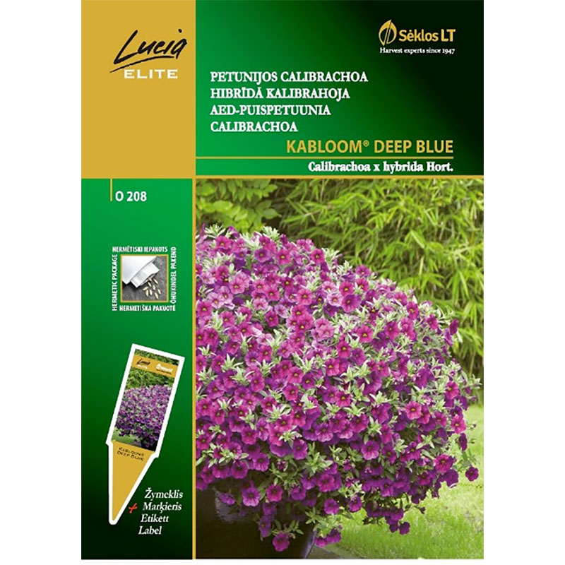 Petunia Kabloom Deep Blue,