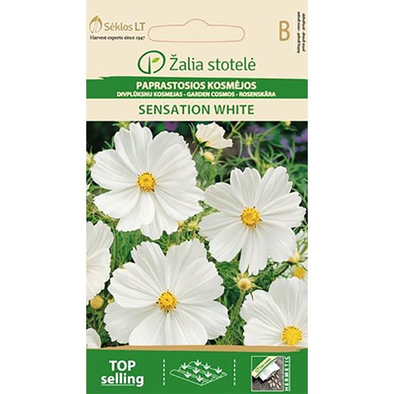 Rosenskära Garden Sensation White,