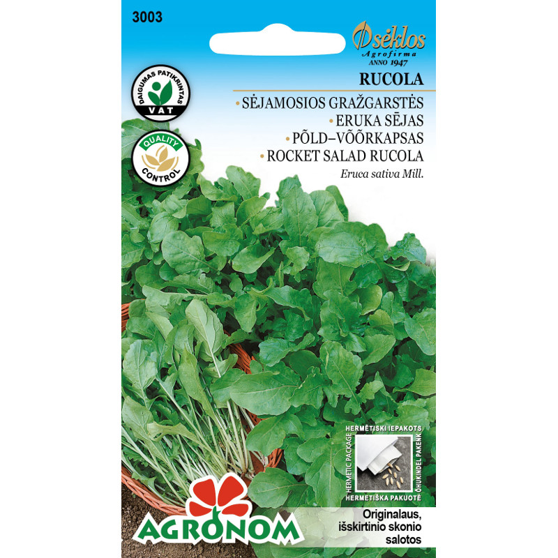 Ruccola Rocket Salad, Frö till Ruccola