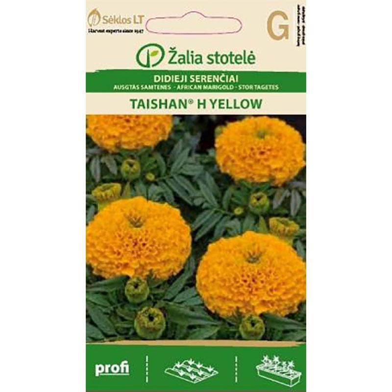 Tagetes African Taishan Yellow,