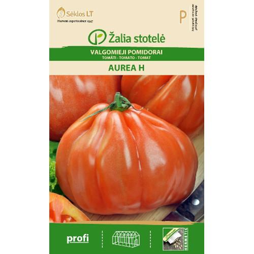 Tomat Aurea-Frö till Tomat - Aurea