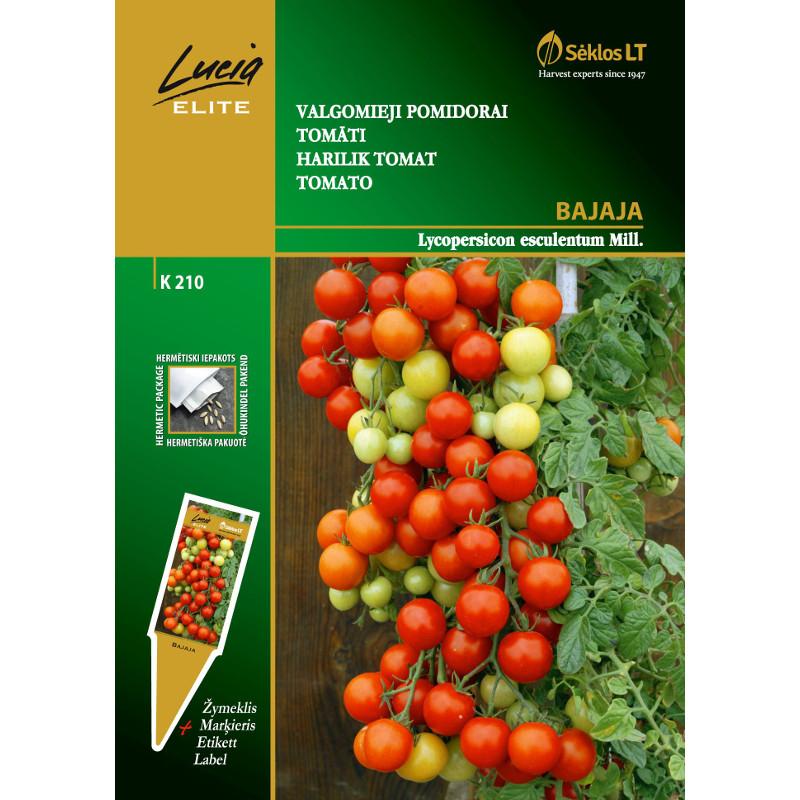 Tomat Bajaja-Frö till Tomat - Bajaja