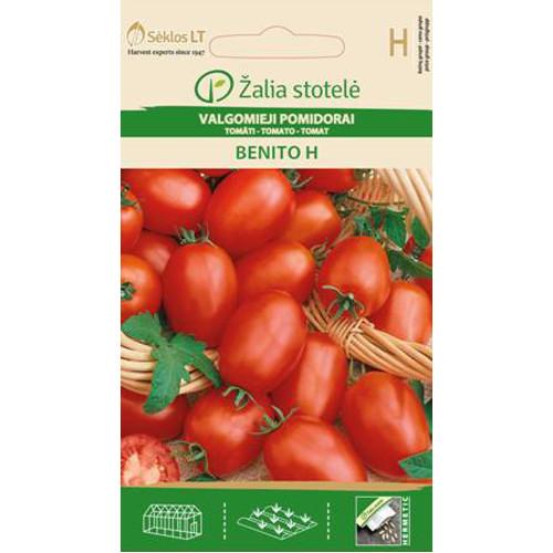 Tomat Benito-Frö till Tomat - Benito