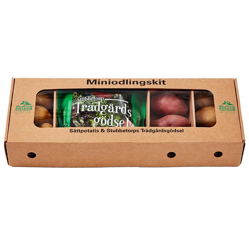Miniodlingskit, sättpotatis-Specialpaket med utvald sättpotatis