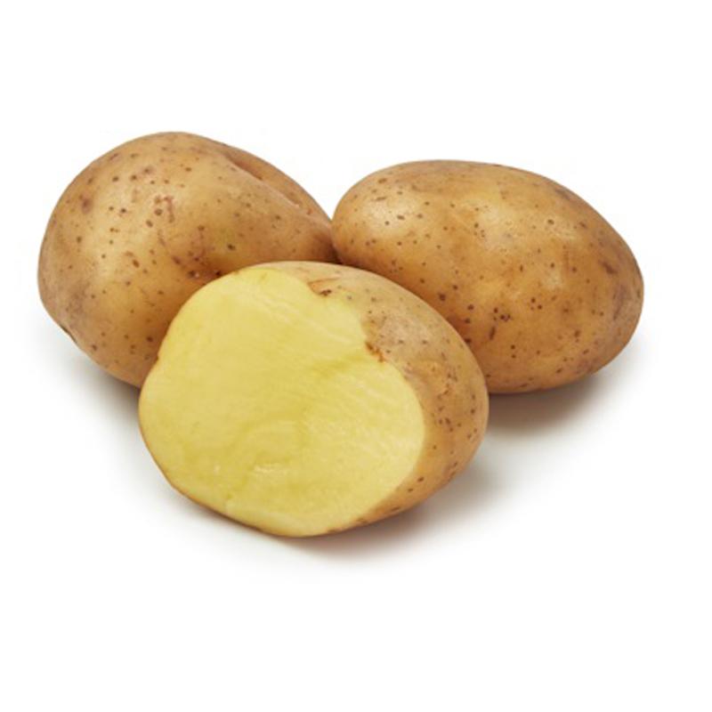 Sättpotatis till myckt tidig potatis Timo