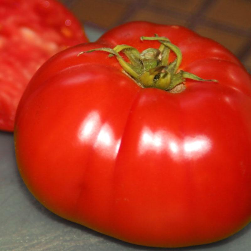 Frö tlll tomat, Solanum lycopersicum 'Delicious'