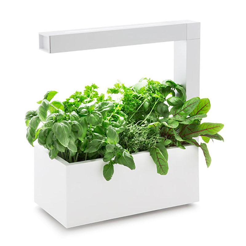 Herbie Inomhusodling - Herb:ie 23 - Vit-Indoor garden Herbie - inomhusodling i hydrokultur