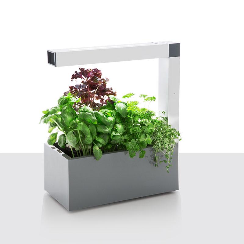 Herbie Inomhusodling - Herb:ie 23 - Grå-Indoor garden - Herbie - inomhusodling i hydrokultur