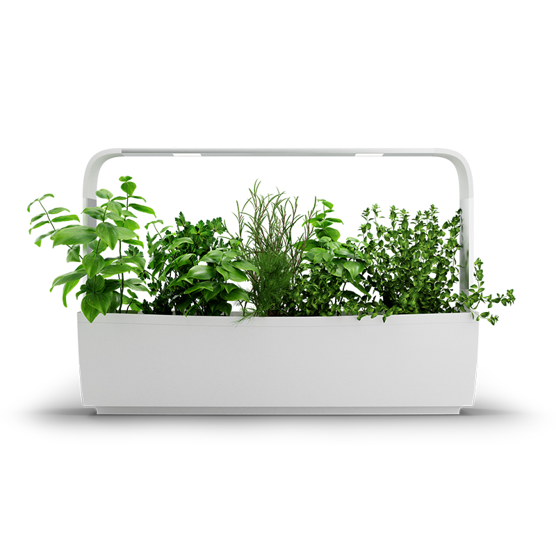 Kitchen Garden T12 - inomhusodling, vit