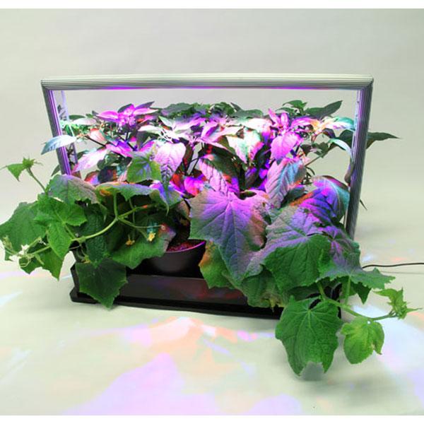 Mini Plant Factory PMF-M20,