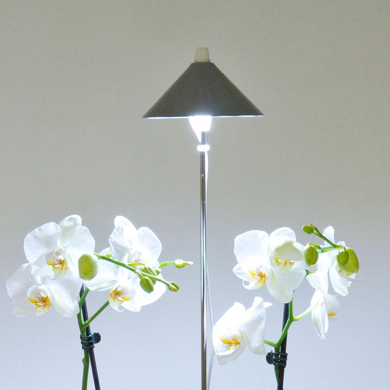 SunLite växtlampa med teleskopstativ, grafitgrå-SunLite växtlampa för inomhusodling