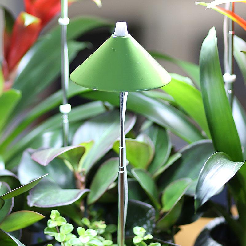 SunLite växtlampa med teleskopstativ, limegrön-SunLite växtlampa för inomhusodling